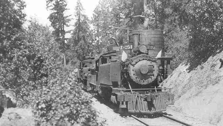 Northwestern Pacific train on Fort Bragg Railroad. Locos 201, 2-6-2t, and 251, Shay, on line to NWP mill at Irmulco (Irvine Muir Lumber Company), taking water, August 5, 1920
