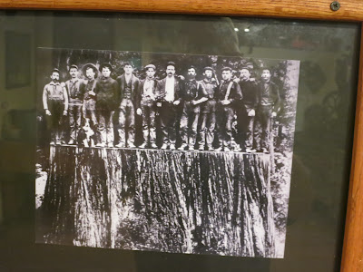 One of the photos on the walls of the Samoa Cookhouse