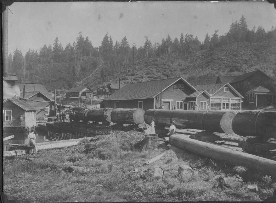 Train with logs leaving Wendling for the Mill