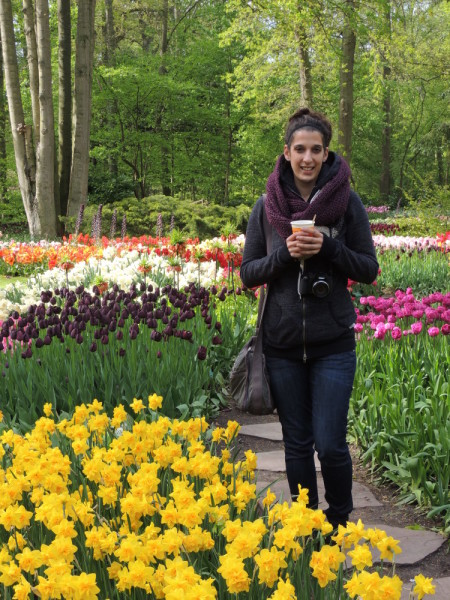 Holly among the tulips - asp