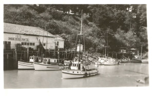 1915 Fishing boats in front of Noyo Salmon Co building in Noyo Harbour