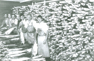 1930 View inside salmon canning factory