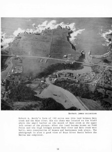 1950 Aerial View of Todd Point