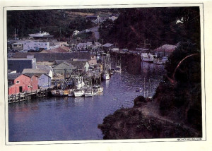 1987 Aerial Viiew upstream of Noyo harbour