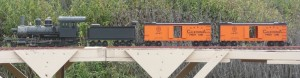 Tony's consolidation with freight cars works the straight on dan's layout by the blackberry bushes