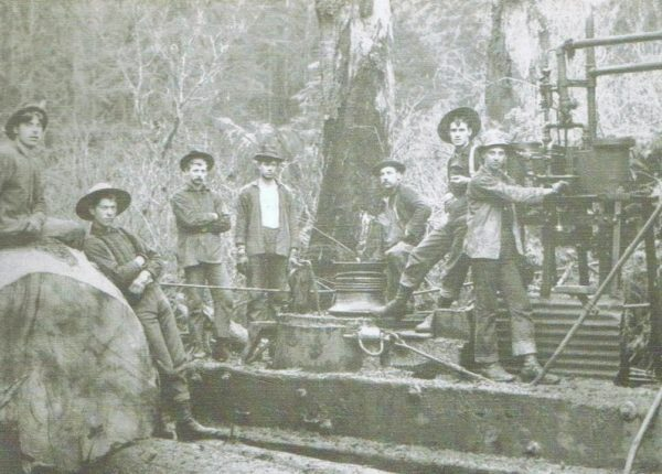 Steam Donkey with a capstan #3