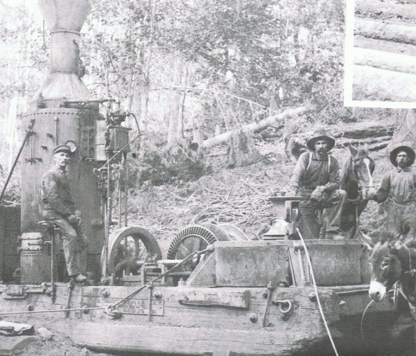 Steam Donkey with a capstan #2