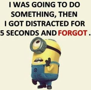 Minion saying #10