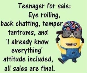 Minion saying #4