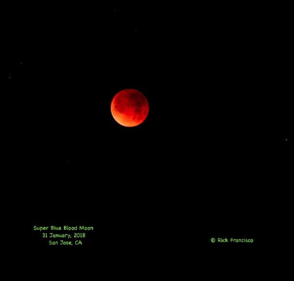Super Blood Wolf Moon #2