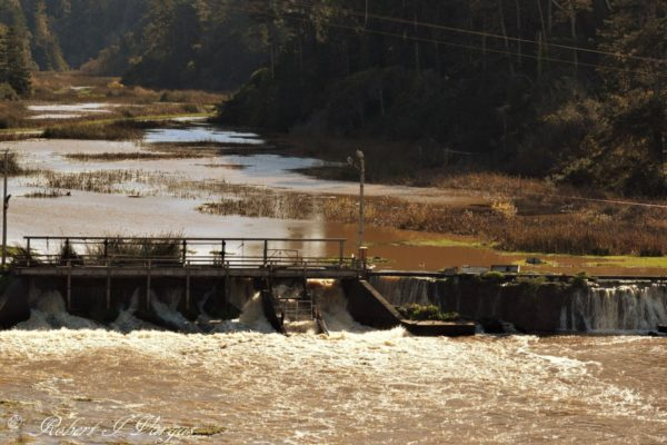 Puddding Creek dam after a rain storm
