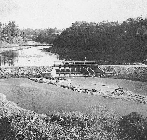 Pudding Creek dam before the pond became overgrown