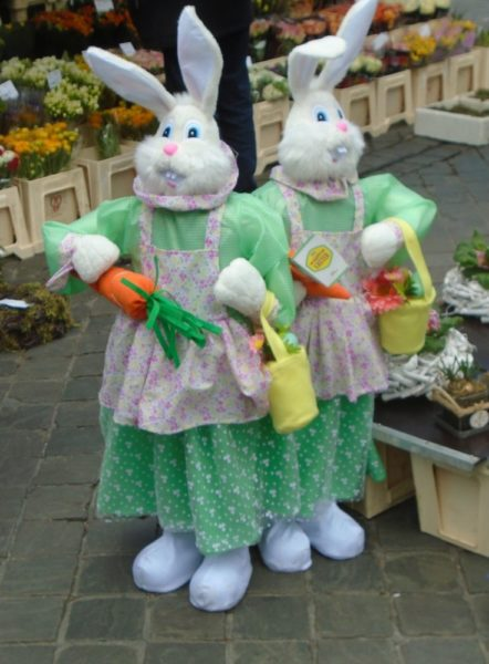 These bunnies were found in the Maastricht market
