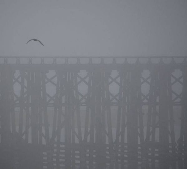 Pudding Creek Trestle in the early morning fog